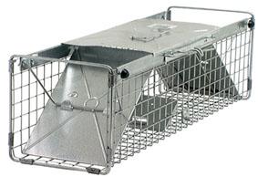Havahart 1030 Cage Trap 1030