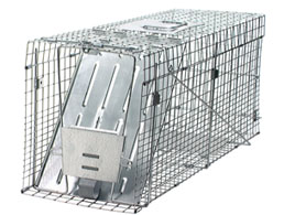 Havahart 1089 Collapsible Large Cage Trap #1089