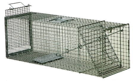 Safeguard� Professional Rear Release Cage Trap 54124PRR