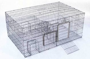 Safeguard® 53835 Sparrow Trap #53835segd