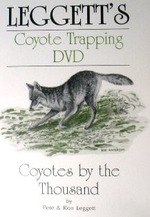 Coyotes by the Thousand DVD by Pete and Ron Leggett leggettdvd02