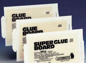 Catchmaster Giant Rat Glue Board 24GRB